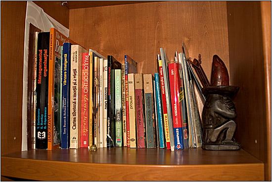 pe-un raft de biblioteca