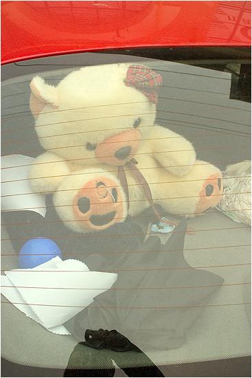lunette-posing-fluffy-bear