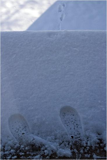 iarna la etaj