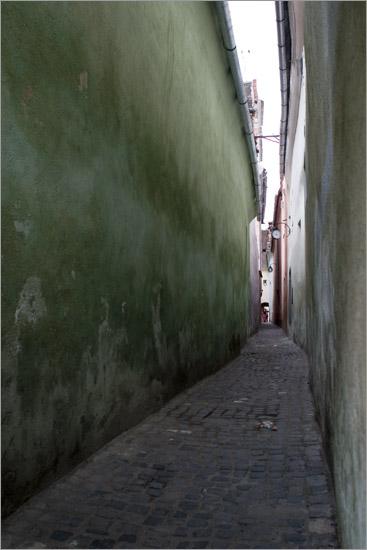 perete verde de ne cerne