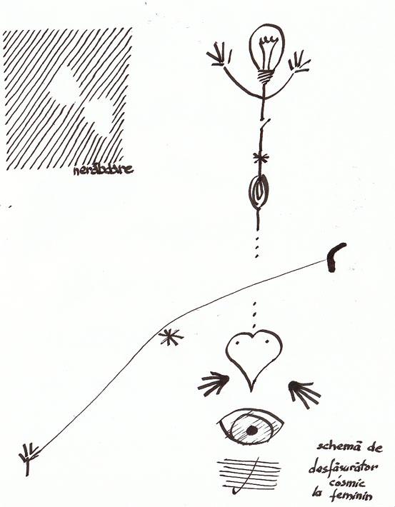 schema de desfasurator cosmic plus nerabdare